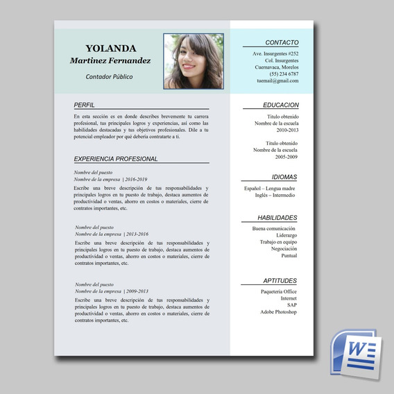 Formato Curriculum Vitae En Mercado Libre México