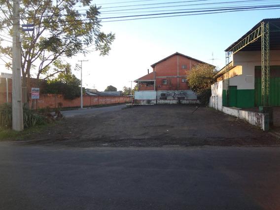 Terreno - Sao Luis - Ref: 46212 - V-46212