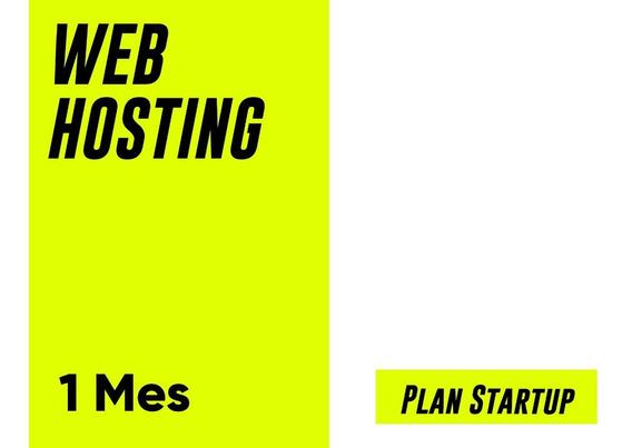 Web Hosting - Plan Startup - Wordpress Incluido - $233 X Mes