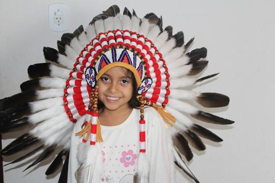 Cocar Indigena Americano.