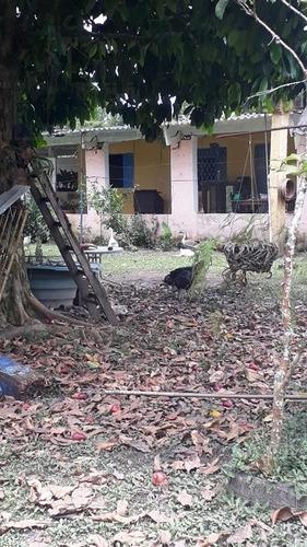 Rural Para Venda, 2 Dormitórios, Parque Da Alvorada - Itanhaém - 12420