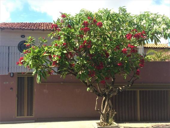 Casa Com 6 Quartos, 5 Suítes- Jardim Renascença, São Luís Ma