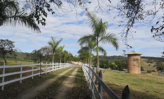 Fazenda Pecuária - 219 Hectares - Belo Vale (mg) - 767