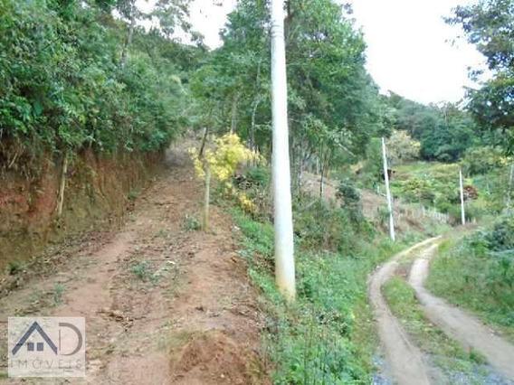 Terreno Para Venda Em Nova Friburgo, Mury - 125_2-393362