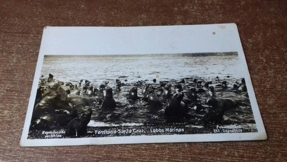 Postal Antigua Territorio De Tierra Del Fuego