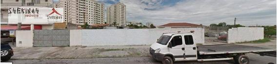 Terreno Comercial Para Locação, Cidade Líder, São Paulo. - Te0182