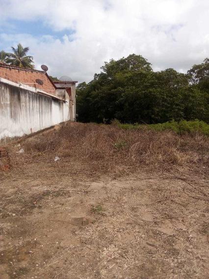 Terreno De 400mts A 100 Mts Da Praia Mais Linda De Alagoas