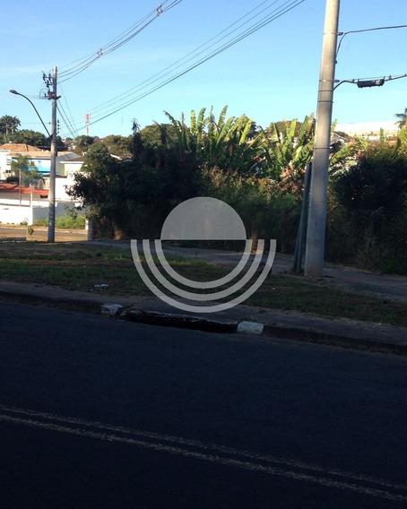Terreno À Venda Nova Campinas - Te00191 - 32624157