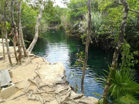 Tulum Terreno Zona Del Cerca Cenote Escondido Escriturado
