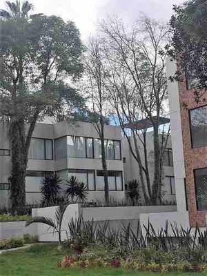 Departamento En Renta En Colonia Mixcoac