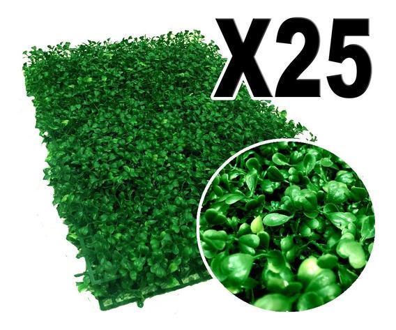 6.0 M2 De Follaje Muro Verde P6 Arrayan Rs25