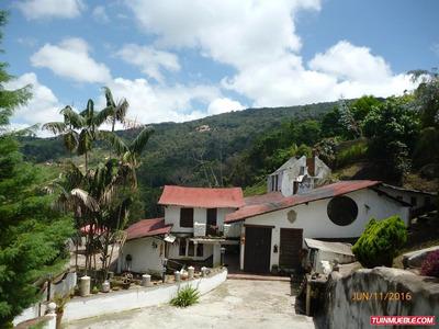 Casas En Venta (potencial Turistico)