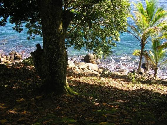 Terreno Em Ilha Grande, Próximo A Lagoa Verde, Ilha Grande