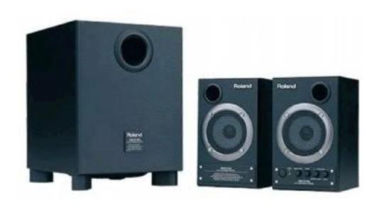 Monitor Estúdio Roland Dm2100 2.1 Usado.