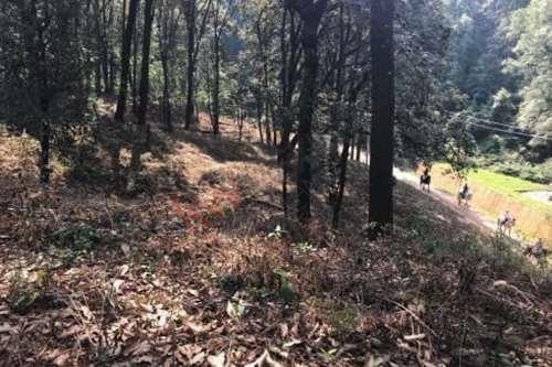 Imagen 1 de 8 de Terreno En Venta En Camino A San Simón Con Un Rio