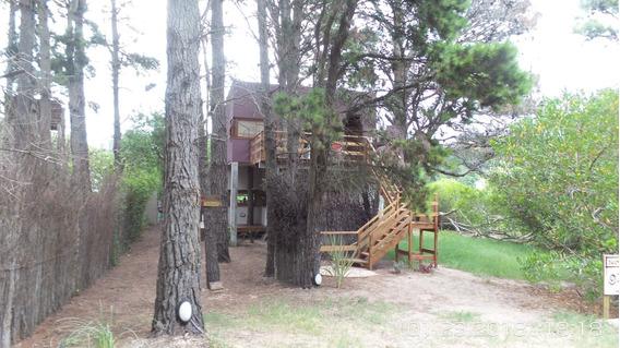 Casalamucha Casa En El Bosque Para 5 Personas Y Departamento