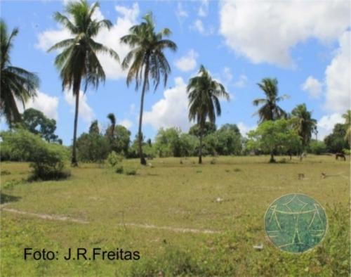 Imagem 1 de 9 de 3.8 Hectares Em Zona Urbana De Parnamirim - V-7555