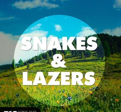 Big Edm - Snakes E Lazers Wav, Midi, Serum