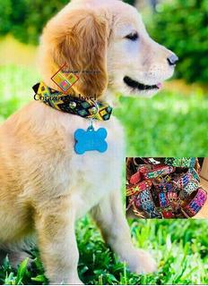 15 Collares Para Mascotas/perros Artesanal De Piel Bordados