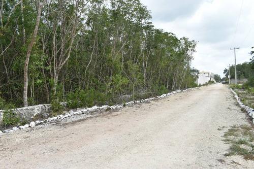 Imagen 1 de 10 de En Venta Terreno En Cancún, Colonia Doctores C2991