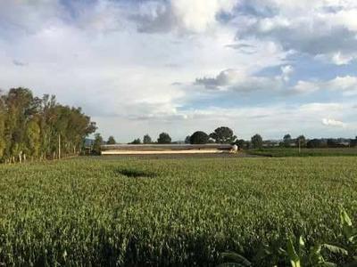 Terreno En El Chispeadero, Tepatitlan De Morelos