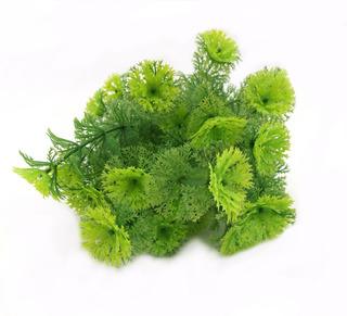 6 Plantas Nahuaa Verde Artificial Envío Gratis Green Line