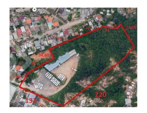 Imagem 1 de 8 de Terreno - Jardim Carvalho - Ref: 196560 - V-196560