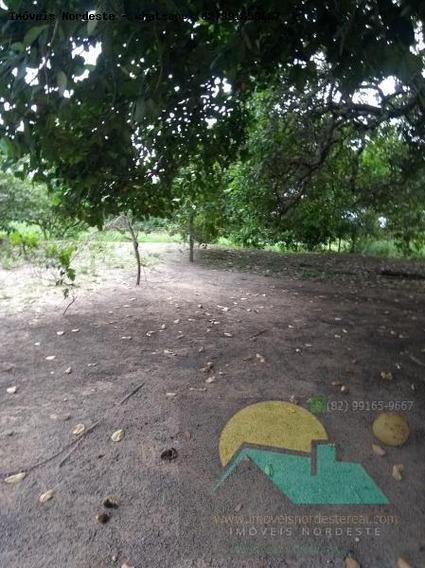 Chácara Para Venda Em Joaquim Gomes, Zona Rural - Ch-017