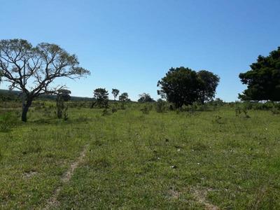 Área Rural Para Venda Em Ribas Do Rio Pardo - Pa30