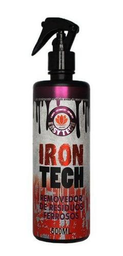 Imagen 1 de 1 de Descontaminante Ferroso Irontech 500ml Easytech