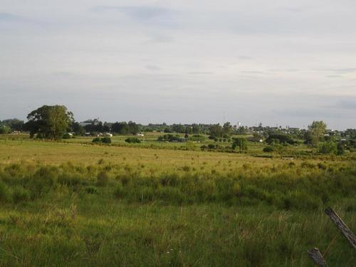 Campo Pegado A Tala, 22 Hás