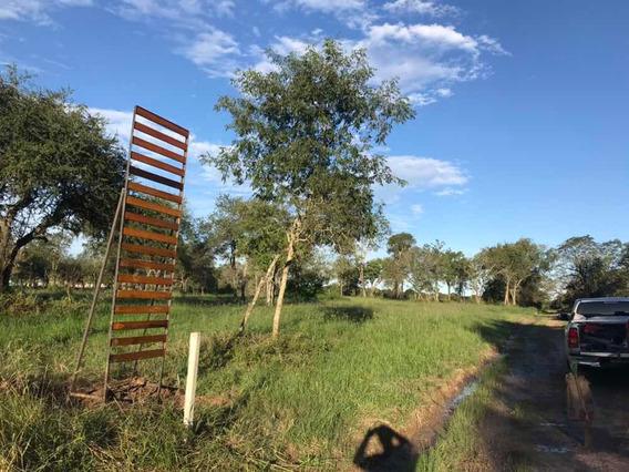 Colonia Benitez // Terrenos En Venta