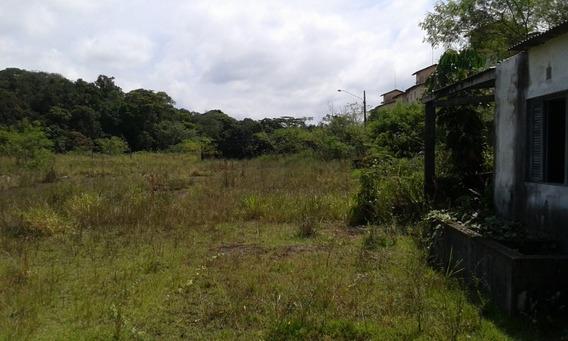 Peruibe Area Rural 10 Alqueires Bananal Estr. Armando Cunha