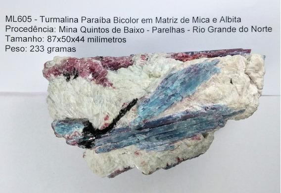 230g Turmalina Paraíba Bicolor Matriz Mica Albita Goldmb