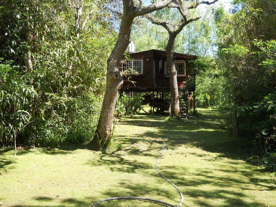 Cabaña En El Delta De Tigre Alquiler