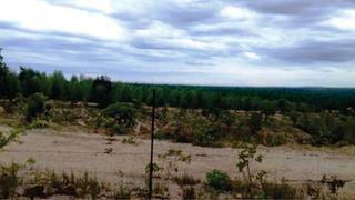 Fazenda Com 1 Quartos Para Comprar No Centro Em Inimutaba/mg - Msn1070