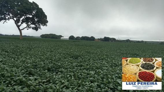 Fazenda A Venda Em Crixas Do Tocantins-to - De 968 Hectares (dupla Aptidão) - 1437