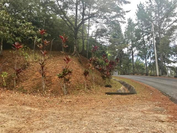 Cerro Azul, Practico Terreno En Alquiler, Panama Cv