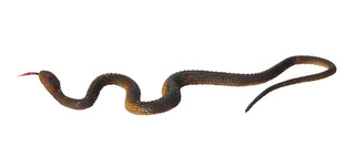 Simulación Negro Caucho Serpiente Falso Serpiente Jardín A