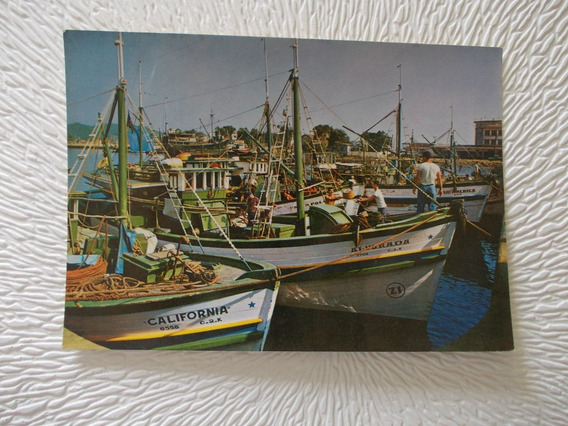 3292- Postal Brasil, Puerto Pesca, Mercator