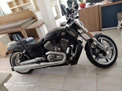 Moto Harley Davidson V-rod 2015 Muscle Vrscf