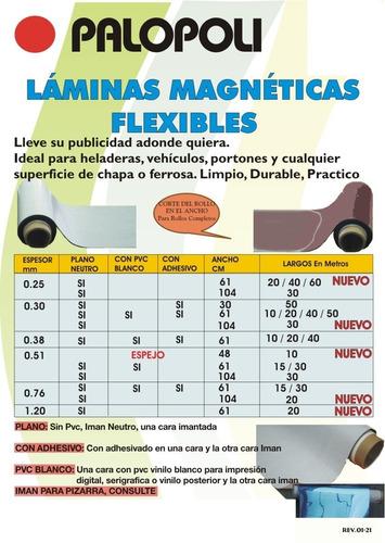 Rollo Iman Con Adhesivo 0.61x30m Palopoli Esp 0.51mm Vehic