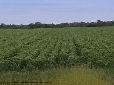 Fazenda Para Venda Em Uberaba, Área Rural - Lf273