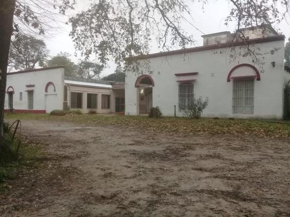 Campo - Berisso