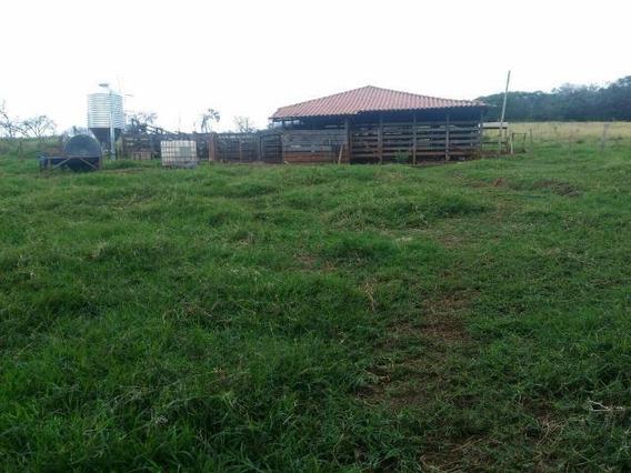 Fazenda Rural À Venda, Centro, Tiros. - Fa0145