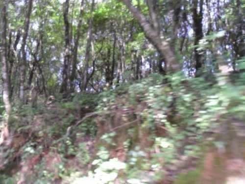 Imagen 1 de 2 de Terreno En Santa Ana Jilotzingo, Los Manantiales