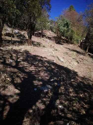 Terreno Ascendente, Fracc. Villa Alpina Naucalpan