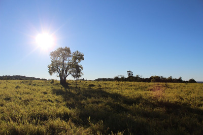 Campo Excepcional A Tranquera Cerrada (field To Closed Tranq