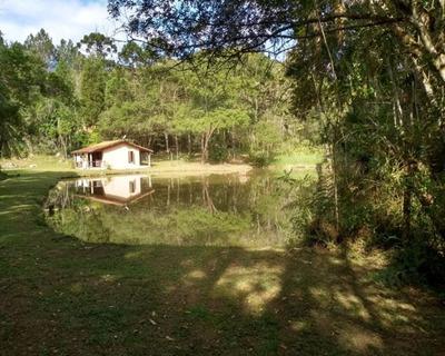 Sítio Rico Em Água Com Nascente Própria E Lindo Lago Piscoso. - 140 - 32982839