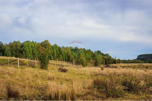 Imagen 1 de 30 de Hermosa Parcela Cercana A Linao Chiloe